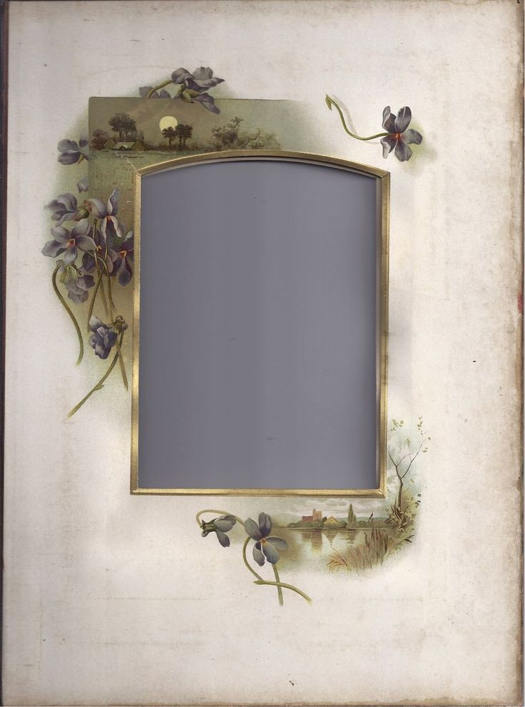 Lovely Chromolithograph Page From Victorian Photo Album, Violets, Cabinet Photograph