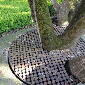 Giardino della Villa Il Roseto photo n.17