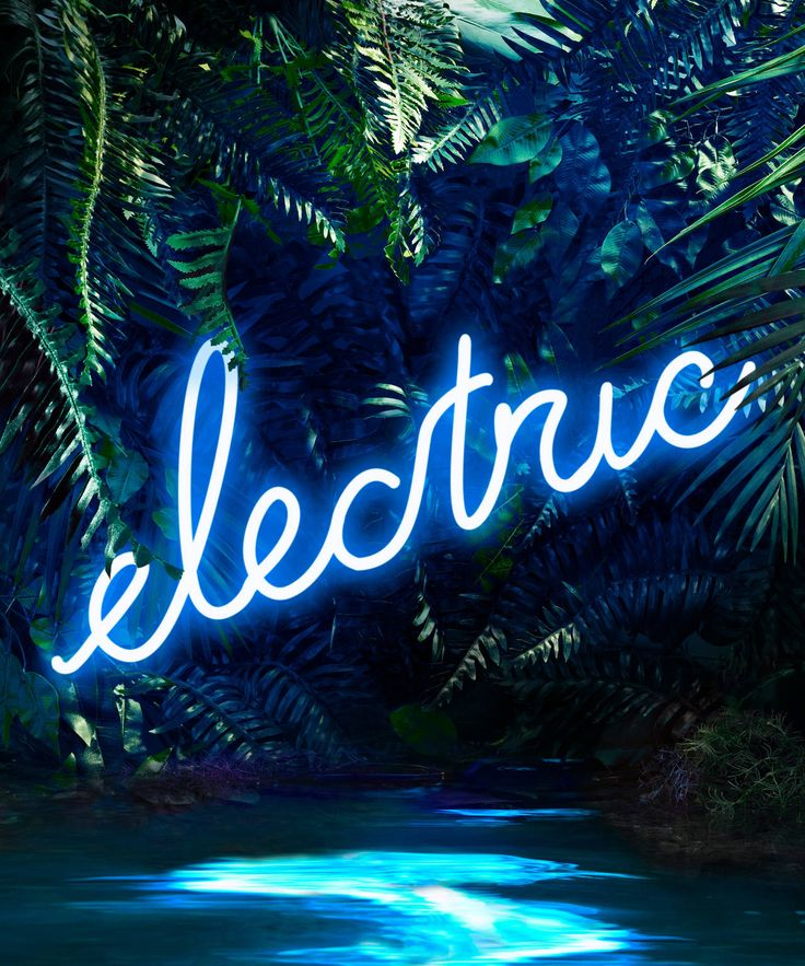 Disco in the Jungle Electric Blue  sc 1 st  Pinterest & 25+ trending Neon jungle ideas on Pinterest | Midnight garden ... azcodes.com