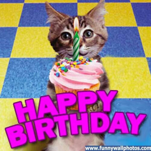 Happy Birthday Cat Wishes: 17 Best Images About Cats/Birthday Wishes On Pinterest