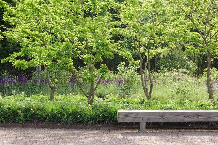 Amy Vonheim | Garden Photographer's Association