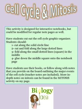 This interactive notebook cut-and-paste notes activity is designed to help students understand the concept of the cell cycle and mitosis. Topics covered include: G1 phase, G0 phase, S phase, G2 phase, and M phase (or cell division). Mitosis in-depth notes are found in another activity.