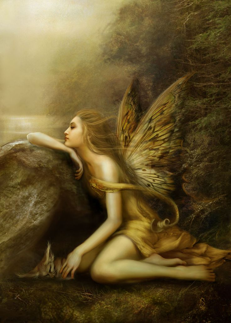 forest fairies - Google Search