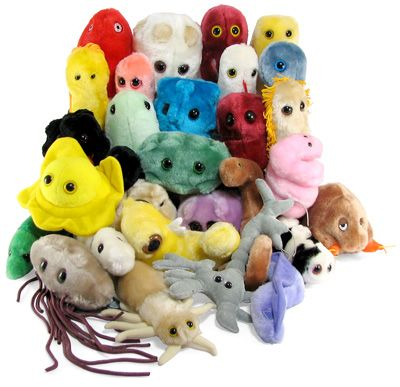 Giant Plush Microbes - think geek - $8.99 I nearly bought the flu and brain cell two days ago at a store in the mall and I kept telling my family 'I nearly got the flu!' and 'I touched a brain cell!'