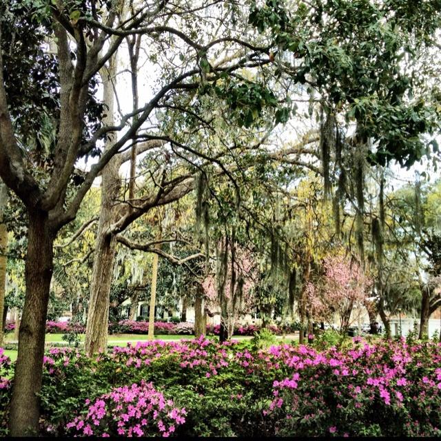 Forsyth Park - March 8, 2012 - Savannah, GA