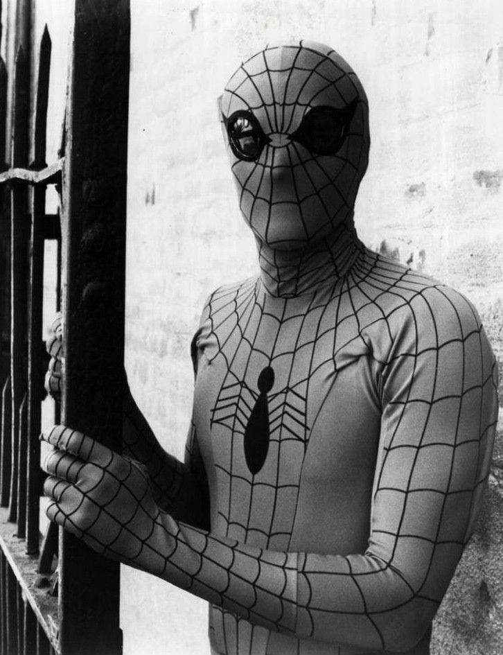 Nicholas Hammond as The Amazing Spider-Man (1978)