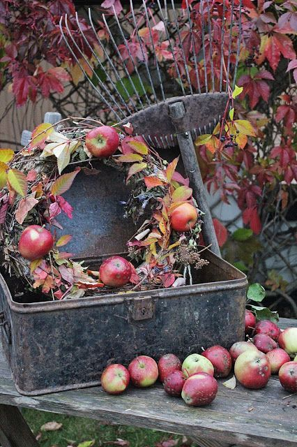 Beautiful fall vignette with a apple wreath, old rake, and a vintage metal box. So pretty with the red leaves and apples.