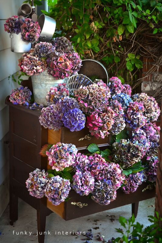 How to {Dry & Decorate With} Hydrangea!
