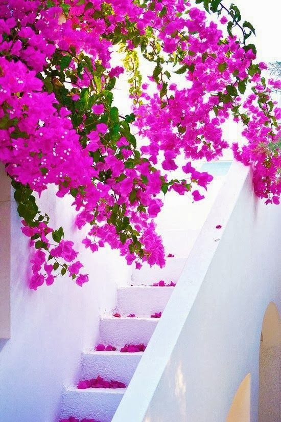 Greece Travel Inspiration - Santorini, Greece  Last minute summer holidays www.hkoffers.com
