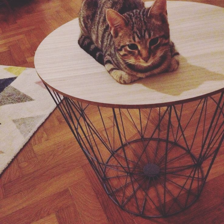 Wire table - nordic and industrial style. Bonami, 800 CZK (after reduction of defects 400 CZK)  #table #livingroom #wire #nordic