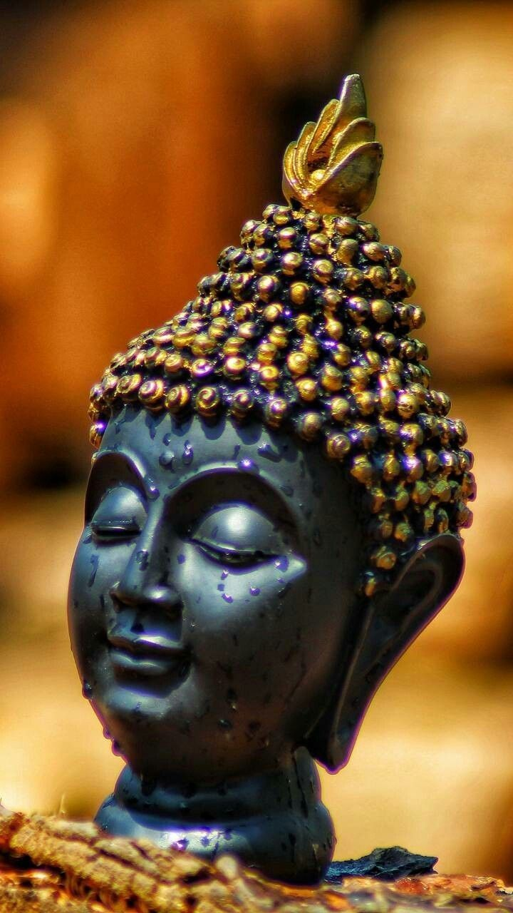 Buddha Quotes Here Is A List Of The Best Buddha Quotes In 2021 Buddha Zen Quotes Buddha Buddha Quotes