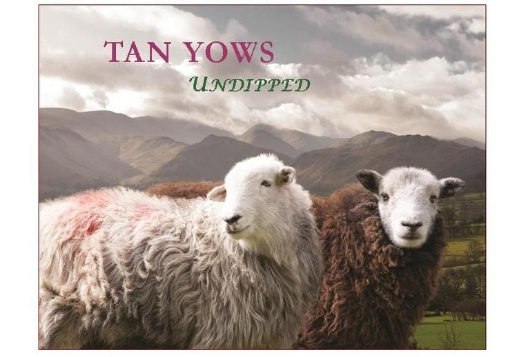 Love this Tan Yows CD.