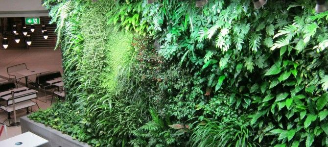 Home Improvement: Your Guide about Beautiful Vertical Gardens