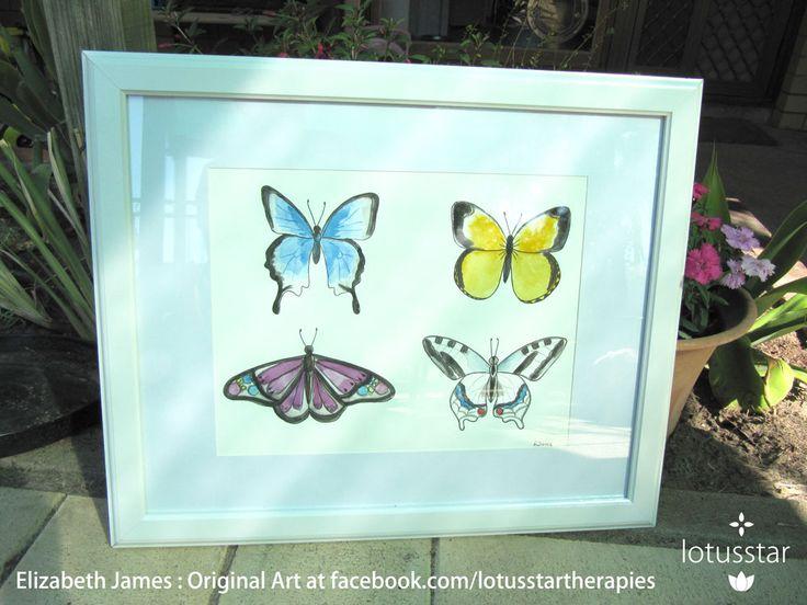 'Beautiful Butterflies' in watercolour 45.5x55cm framed by Elizabeth James. Original artwork and fine art prints available via http://www.facebook.com/media/set/?set=a.675692062503221.1073741835.318539891551775&type=3  #butterfly #butterflies #watercolour #fineart #elizabethjames #lotusstar #adelaide