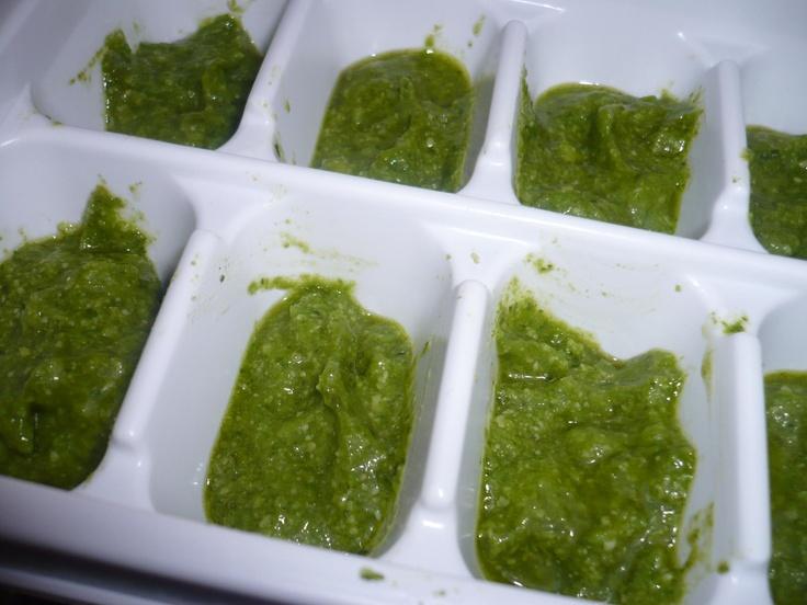 * basil pesto freeze * Basil pesto, Pesto, Healthy lunch