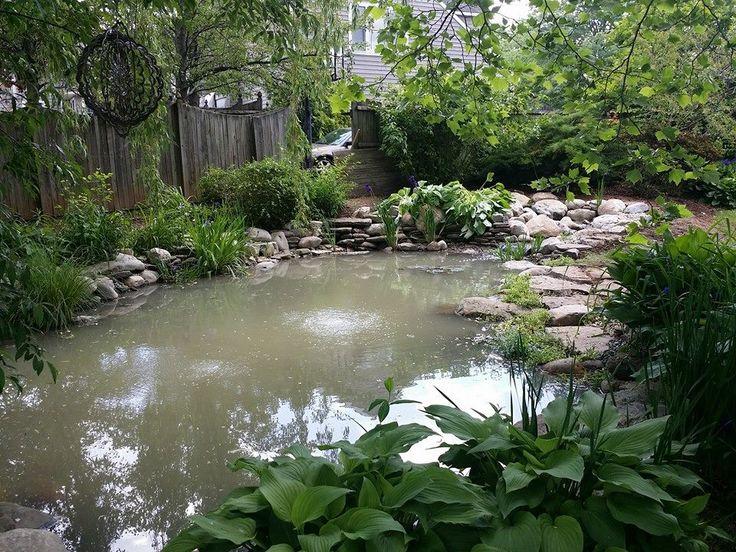 Beautiful backyard pond installed in Bucks County, PA. #pond #backyard #landscape #gardening #buckscounty