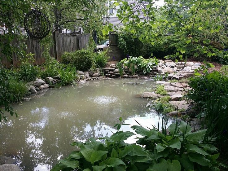 Beautiful backyard pond installed in Bucks County, PA. #pond #backyard #landscape #gardening #buckscounty