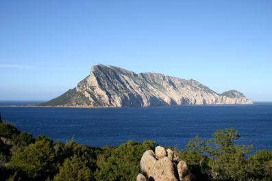 isola_Tavolara_San_Teodoro.jpg (397×265)