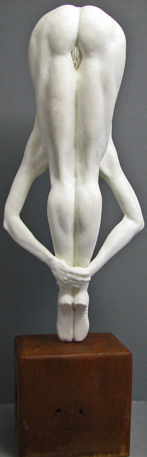 61 best anatomy sculpture images on Pinterest | Anatomy reference ...