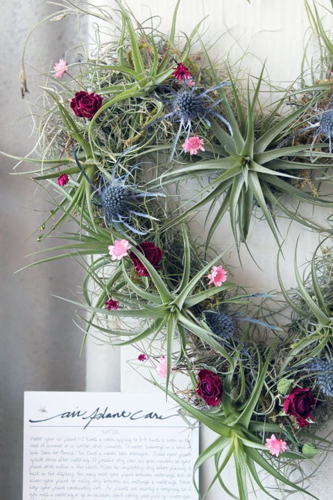 HEART wreath using air plants   Beautiful interpretation   Etsy.!!! Bebe'!!! Love this heart wreath!!!