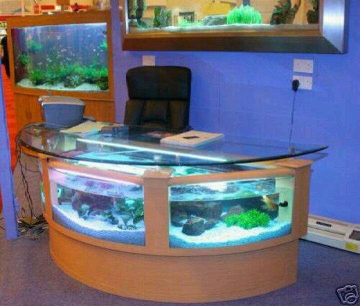 81 best Fish tanks images on Pinterest Aquarium ideas Aquarium