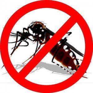 Assunto - Utilidade Pública: Cuidado com a dengue.