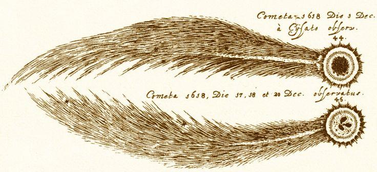 Due aspetti della Grande Cometa del 1618, secondo le osservazioni dell'astronomo svizzero Johann Baptist Cysat ( da Hevelius, Cometographia).