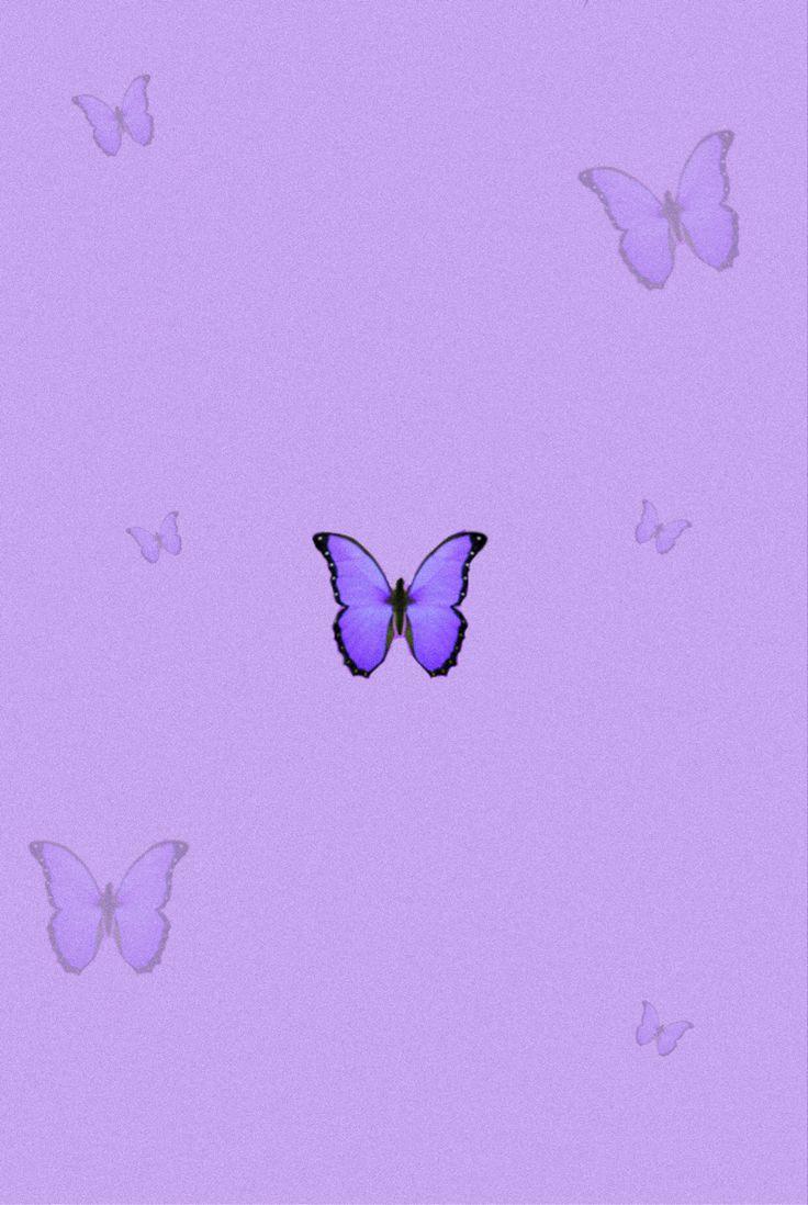 aesthetic purple butterfly 💜 in 2020 | Edgy wallpaper ...