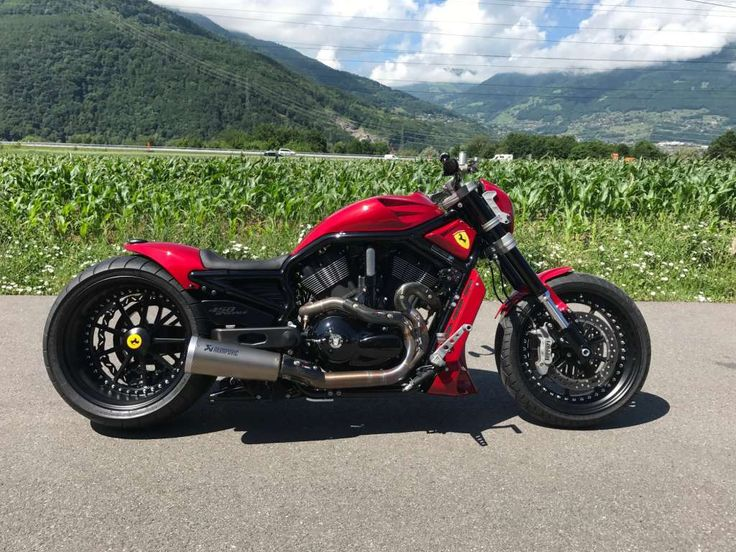 HARLEY-DAVIDSON VRSCDX Night Rod Special ABS, Neuf, Essence, 500 km, CHF 119'000.-