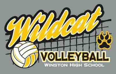 50 best volleyball t shirts images on pinterest for Graphic edge t shirt design