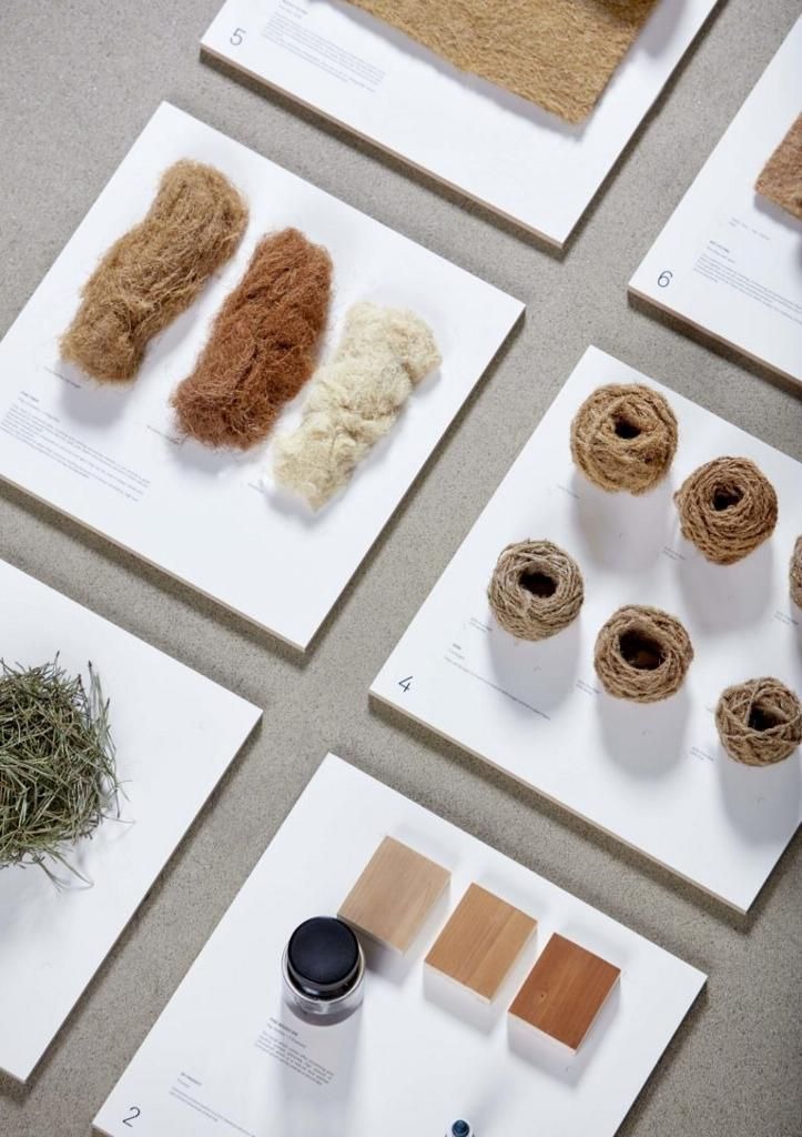 Tamara Orjola, Forest Wool collection