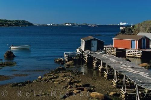twillingate-harbour Newfoundland_18973.jpg (500×333)