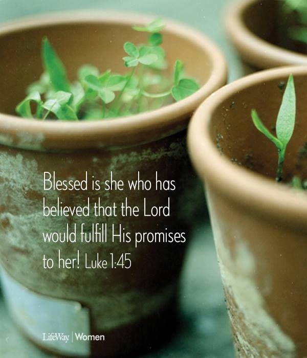 Believe in Gods promises!