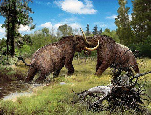 Fighting Bull Mastodon by Velizar Simeonovski