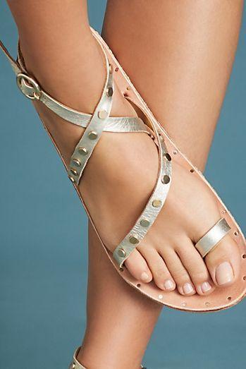 d5594273348 Beek Lorikeet Gladiator Sandals