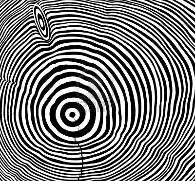 10840223-full-frame-abstracte-afbeelding-toont-een-stuk-hout-met-zwart-en-wit-geschilderde-jaarringen.jpg (400×372)