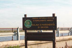scopri_la_puglia_imperiale_riserva_naturale_margherita_di_saovia_fenicotteri_2