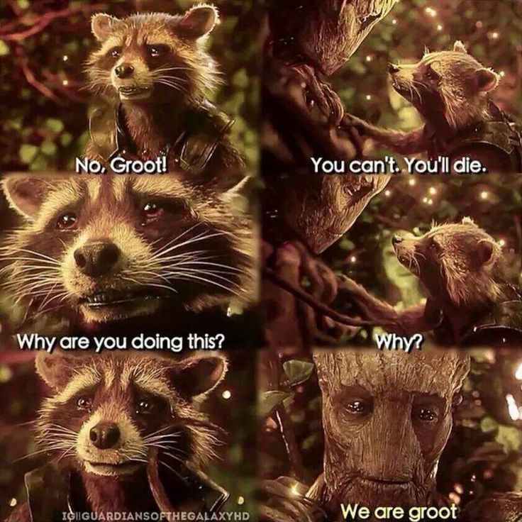 We are Groot. That's okay I didn't need my heart. (Still makes me bawl every time.)