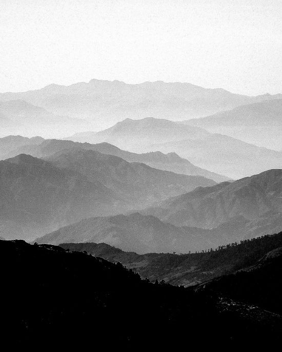 Mountain mist black and white collection by frederick ardley unsigned prints