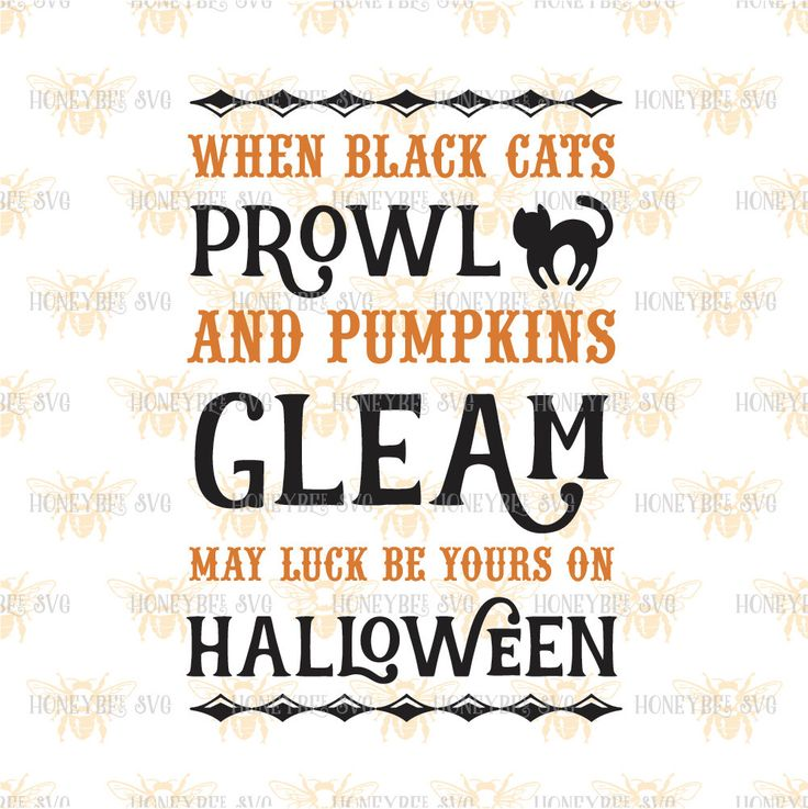 When Black Cats Prowl svg Halloween svg Fall svg Pumpkin svg Black Cat svg…