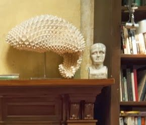 Cbs elementary, Set design and In nature on Pinterest