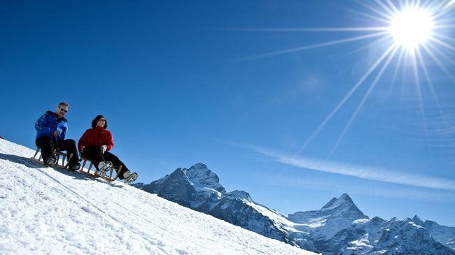 Big Pintenfritz toboggan run- the longest run in the world, through the Swiss Alps