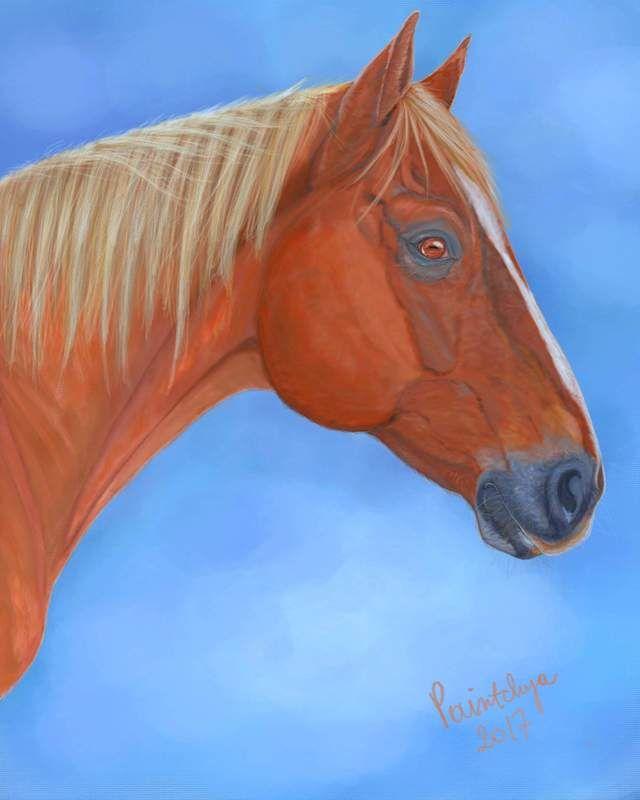 Horse portrait - digital art by Paintchya.com Order your own pet portrait, prices start from $35 for A5 digital portrait