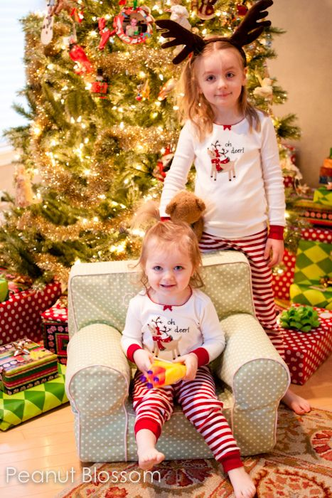 {How to capture your Christmas} Photography tips and inspiration for capturing all the twinkle lights, frosted cookies, and excited children's expressions that will be filling households in the coming weeks.