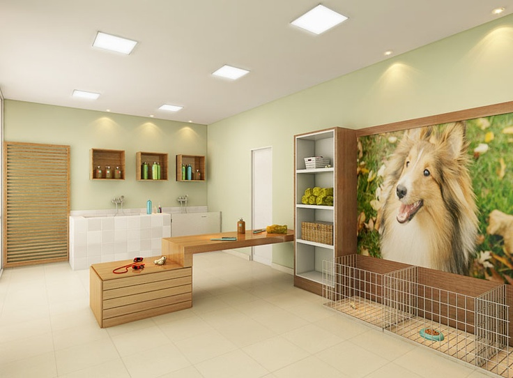 108 best dog care images on pinterest dog daycare kennel ideas visionnaire pet care solutioingenieria Images