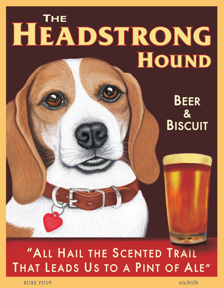 Beagle Art - Headstrong Hound - Beer & Biscuit -  8x10 art print by Krista Brooks. $20.00, via Etsy.-OMG so cute