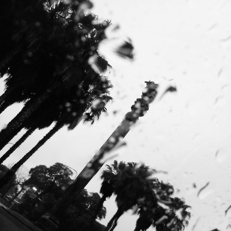 here comes the rain- Palermo