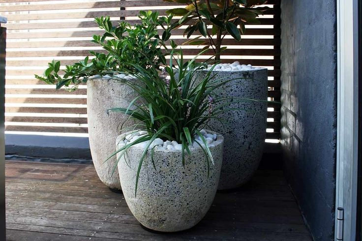 Pots+and+plants+stepped+down+in+sizes