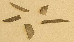 Marcatura Raster su Cartone Vegetale