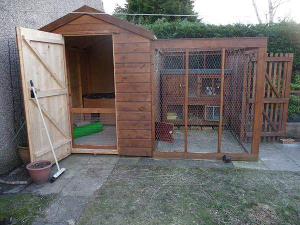 Sheds can often be the same prices a hutch/run combo.  They are much more weatherproof and provide dry and sheltered exercise space